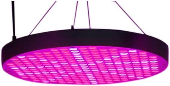 JULYFZM Full Spectrum crece la planta ligero redondo de luz LED Shell Negro 250 Light planta ligera (Color : As picture)