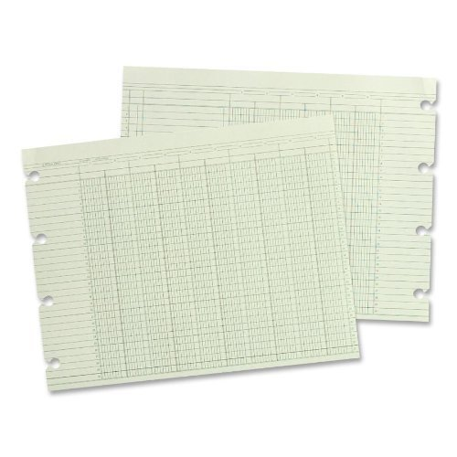 Wilson Jones - Ledger Sheet, 16 Col., Dbl, 9-1/4x11-7/8, 100/PK, Green, Sold as 1 Package, WLJ G1016 by Wilson Jones by Wilson Jones