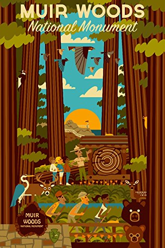 Muir Woods National Monument, California - Geometric (12x18 Art Print, Wall Decor Travel Poster)
