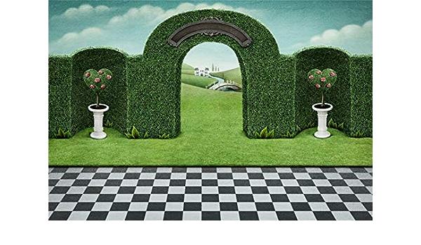 Garden Photography- Beaufort SC Oak Trees Spanish Moss Southern Garden Print Green Black Garden Art Garden Gate Fountain Photo