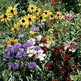 Outsidepride Birds & Butterfly Wild Flower Seed Mix - 5 LB