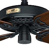 Hunter 23838 Traditional 52``Ceiling Fan