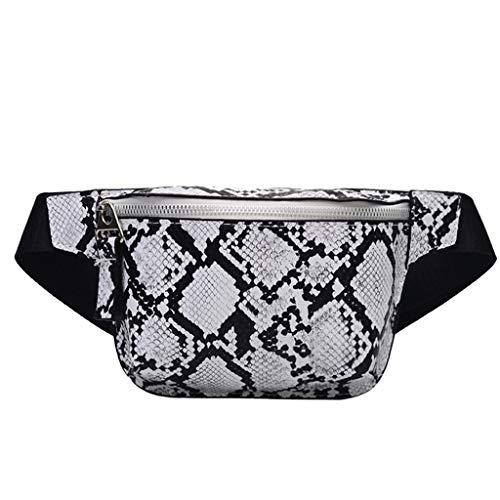 (Waist Pack,Toponly Unisex Outdoor Serpentine Travel Handy Hiking Sport Fanny Pack Waist Belt Zip Pouch)