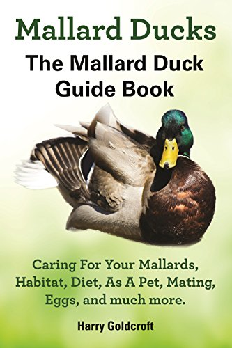 - Mallard Ducks The Mallard Duck Guide Book: Caring For Your Mallards,Habitat, Diet,As A Pet,Mating,Eggs, and much more