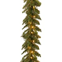 National Tree Company 9 Foot Tiffany Fir Garland w/50 Clear Lights
