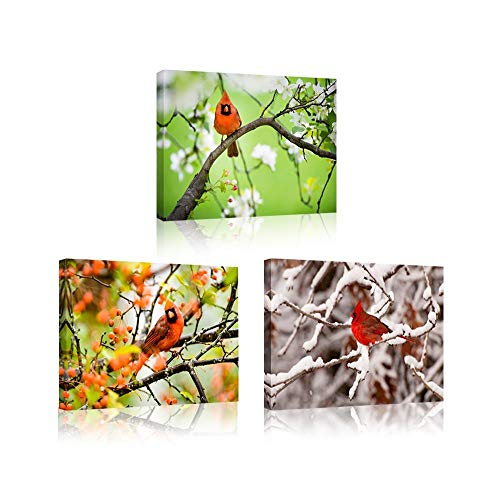 (iKNOW FOTO 3 Pieces Canvas Wall Art Northern Cardinal Perched in A Tree Photograph Printed On Canvas Animal Poster Giclee Artwork Ready to Hang for Home Wall Decoration 12x16inchx3pcs)