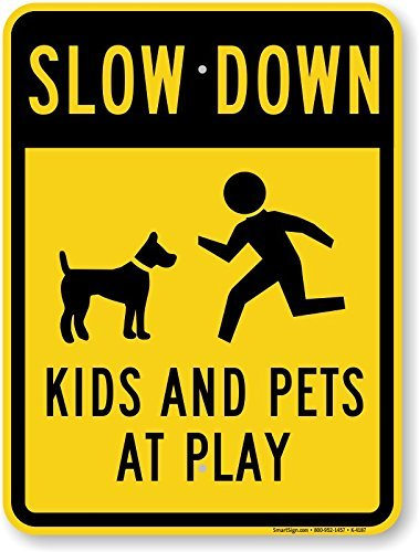 slow children and pets at play - 7