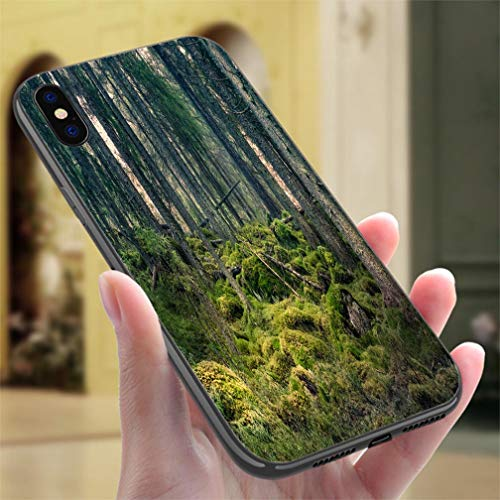 Creative iPhone Case for iPhone 7/8Old primeval Forest with Nice Lights and Shadows Resistance to Falling, Non-Slip,Soft,Convenient Protective Case