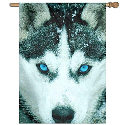(QIZHI Siberian Husky Inspirational Yard House Garden Flags Lawn 27