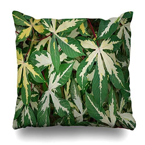 Ahawoso Throw Pillow Cover Square 16x16 Closeup Green Agriculture Nature Drug Flower Flora Foliage Fresh Design Medicine Zippered Cushion Case Home Decor Pillowcase