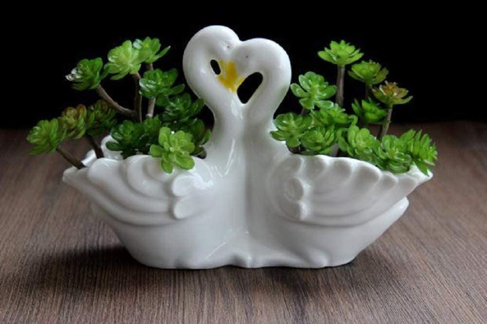 Funnuf Cute Animal White Ceramic Succulent Cactus Flower Planter for Home Garden Office Desktop, 1pcs, swan Couple (Plants Not Included)