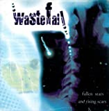 Fallen Stars & Rising Scars by Wastefall