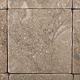 Seagrass / Rustic Green Limestone 4 X 4 Tumbled Field Tile - 4-pcs. Sample-Set