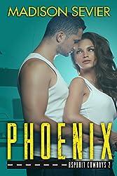 PHOENIX: An Asphalt Cowboys Novel