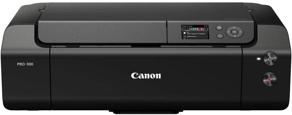 Canon Imageprograf Pro 300 A3 Drucker Computer Zubehör