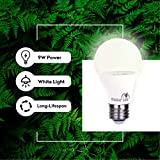 Bioluz LED Full Spectrum Grow Light Bulbs for