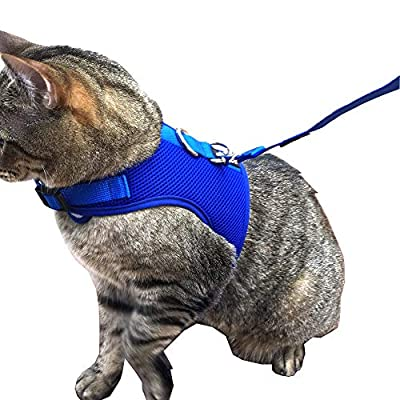 Downtown Pet Supply Best Cat Vest Harness and Leash Combo with Added Safety Features to Make it Escape Proof for Small, Medium, Large Cats and Small Dogs/Puppy (Available in Blue and Black)