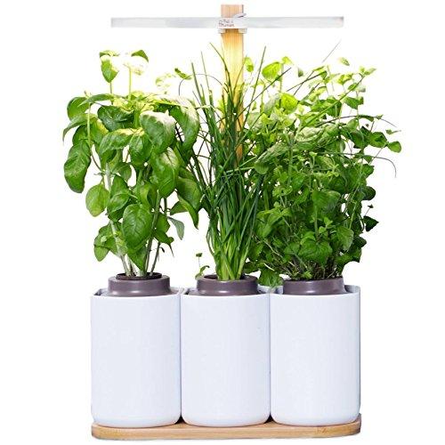 Lilo, Ihr smarter Heimgarten ❃ lassen Sie Ihre eigenen frischen Kräuter wachsen, ganzjährig ❃ biologisch Prêt à Pousser