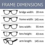 OWL - Non Prescription Glasses for Women and Men - Clear Lens - UV Protection