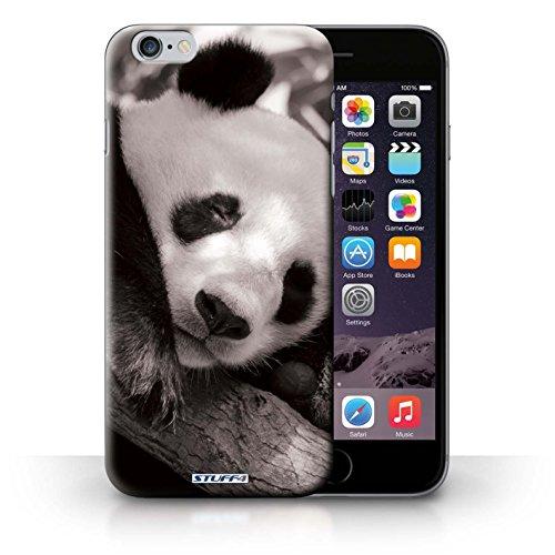 Hülle Case für iPhone 6+/Plus 5.5 / Pandabär Entwurf / Zoo-Tiere Collection