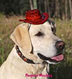 Pampered Whiskers Cowboy Hat for Large to Extra Large Dogs (Rodeo Red)