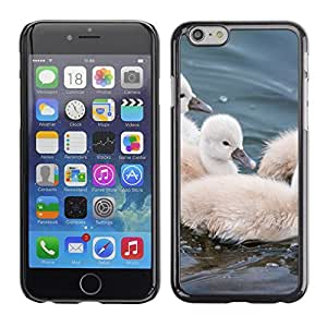 [Neutron-Star] Snap-on Series Teléfono Carcasa Funda Case Caso para Apple (4.7 inches!!!) iPhone 6 / 6S [Peludo lindo Pequeño pájaro del animal doméstico Animal]