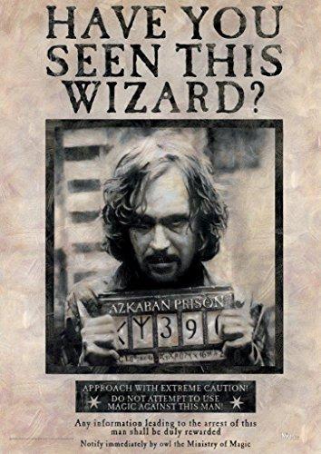 Harry Potter Sirius Black MightyPrint Wall Art Next Generation Premium Poster