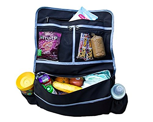 Insulated Stroller Converts Organizer Shoulder