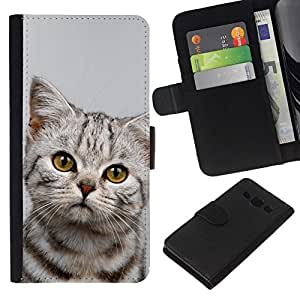 All Phone Most Case / Oferta Especial Cáscara Funda de cuero Monedero Cubierta de proteccion Caso / Wallet Case for Samsung Galaxy A3 // Kitten Sad Manx Azules Shorthair