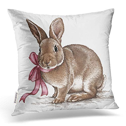 - Emvency Square 18x18 Inches Decorative Pillowcases Easter Rabbit Bunny Engrave Vintage Graphic Cotton Polyester Decor Throw Pillow Cover With Hidden Zipper For Bedroom Sofa