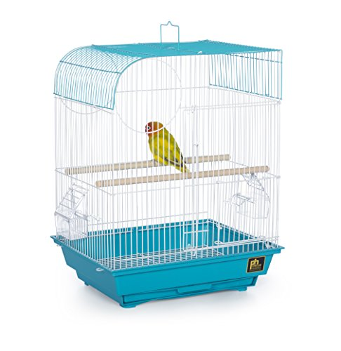Prevue Pet Products South Beach Flat Top Bird Cage, Teal