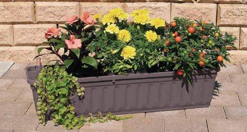 Blumenkasten 60 cm anthrazit mit Wasserspeicher MADE IN GERMANY