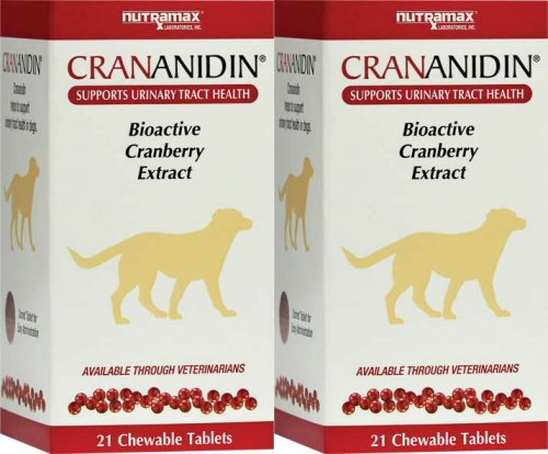 Nutramax Crananidin Chewable Tablets for Dogs 42ct (2 x 21ct) -
