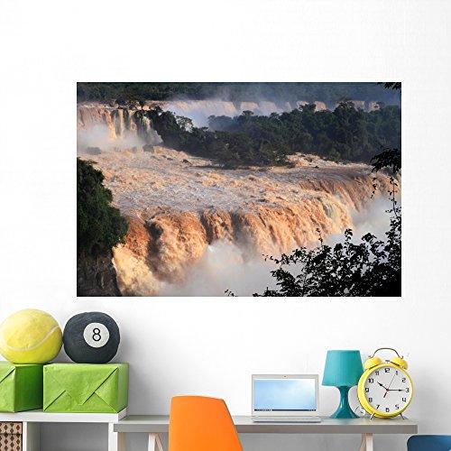 Park Iguacu National - Wallmonkeys WM360788 Flood of The Century at Iguaçu National Park Peel and Stick Wall Decals (60 in W x 40 in H), Jumbo