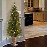 National Tree (MC7-308-40) Montclair Spruce Entrance Tree in 10-Inch Black/Gold Plastic Pot with 50 Clear UL-Lights, 4-Feet