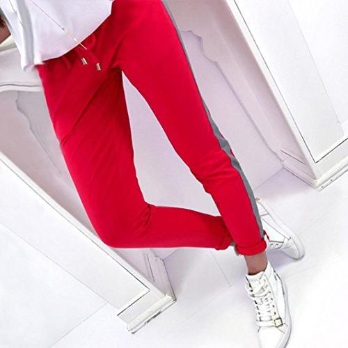 Taille Taille Jeanshosen Empire Femme Jeans ITISME Ecru Unique Rouge Gris 0dWvBnB