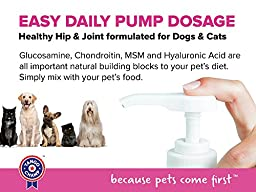 SPECIAL RELAUNCH PRICE – Premium LIQUID GLUCOSAMINE for Cats and Kittens with added Inulin - Healthy Hip and Joint Supplement for Increased Mobility - Chicken Flavor - Handy 16 oz Bottle with Pump