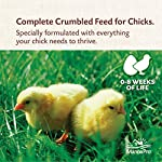 Manna Pro Medicated Chick Starter Crumble Feed For Healthy Growth, 5 lb