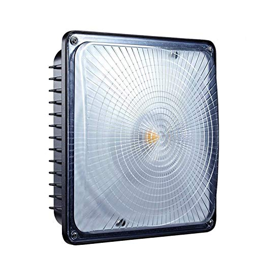 LEONLITE LED Canopy Light FIXTURE, 65W (300W-350W MH/HID Equiv.), 5000K Daylight, 6700 Lumens Floodlight, UL Listed for Area Lighting, Wet Location, 5 Year Warranty