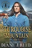 Turquoise Mountain (Iron Feather Brothers) (Volume 1)