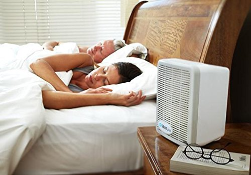 Salin Plus - Natural Salt Therapy Air Filter and Purifier - Helps with Snoring, Asthma, Allergies, and More by Salin PLus (Image #2)