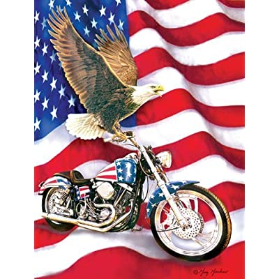 Symbols Of Freedom A 500 Piece Jigsaw Puzzle By Sunsout Inc By Sunsout