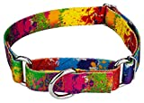 Country Brook Petz - Martingale Dog Collar - Groovy Collection with 5 Far Out Designs (Medium, 1 Inch Wide, Paint Splatter) Larger Image