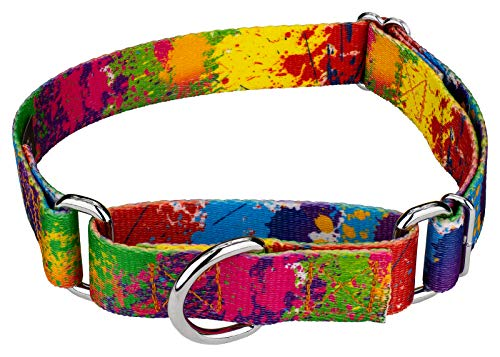 Country Brook Petz | Martingale Dog Collar - Groovy Collection with 5 Far Out Designs (Medium, 1 Inch Wide, Paint Splatter) ()