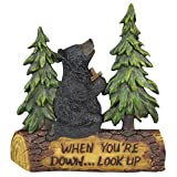 Bring your home or cabin to life with this stunning Praying Black Bear.What a warm heartfelt symbol of Christian faith portrayed in this Black Bear Praying Figurine. Own this figurine or gift it to your loved one during special occasions as a symbol...