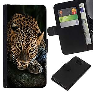 """Be-Star la tarjeta de CršŠdito Slots PU Funda de cuero Monedero caso cubierta de piel Para Samsung ALPHA G850 ( Sleepy puntos del leopardo del animal de piel linda"""" )"""
