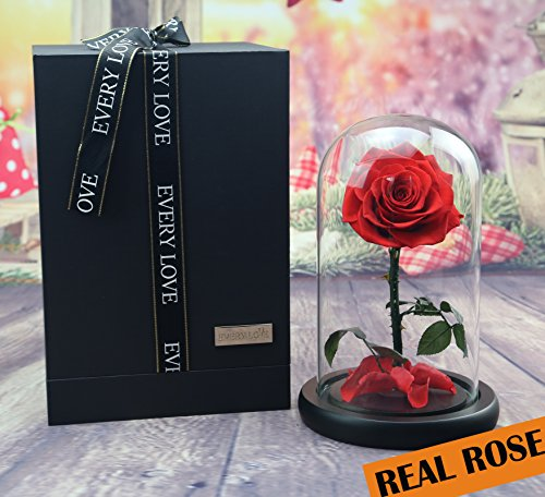 sexyrobot Beauty And The Beast Red Rose, Handmade Real Rose Preserved Fresh Flower with Fallen Petals in a Glass, with Exquisite Gift (Beautiful Glass Ring)