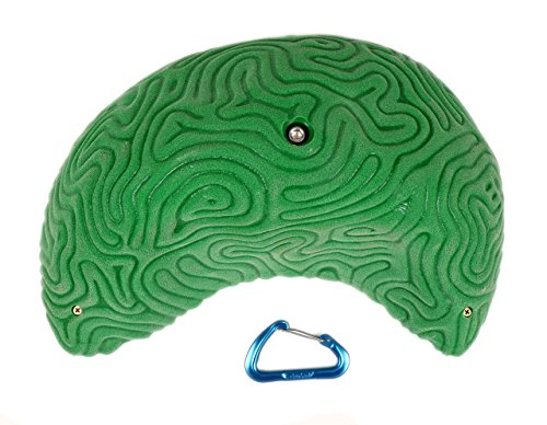 XXXL Brain Coral Organic Sloper #2 | Climbing Holds | Green by Atomik Climbing Holds