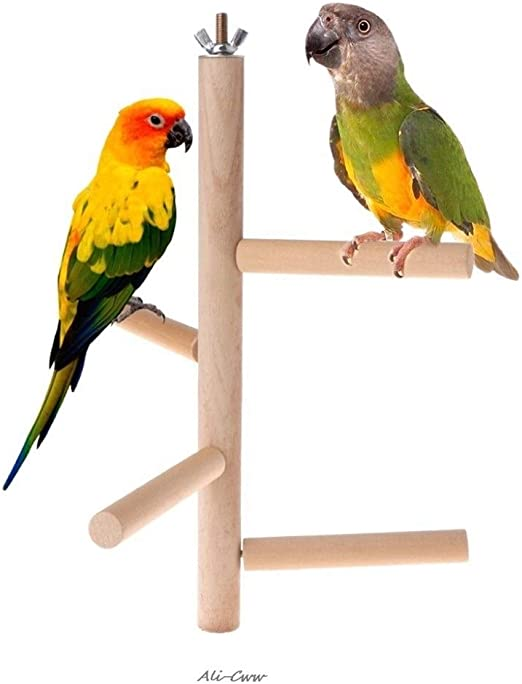 GeWu888 Creativo Loro Perca de 4 Capas etapas Juguetes de Madera Natural de Aves de Escalera giratoria Accesorios Periquito Jaula Columpio de Juguete Ejercicio (Color : White): Amazon.es: Productos para mascotas