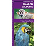 Amazon Wildlife: A Waterproof Pocket Guide to Familiar Species (A Pocket Naturalist Guide)